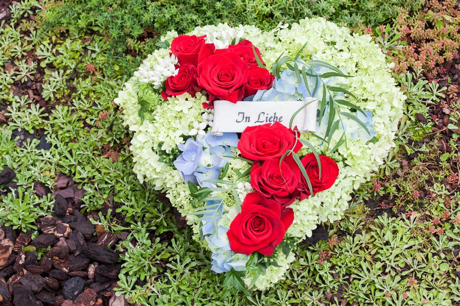 Bedeutung 50 rote rosen 5 Rose